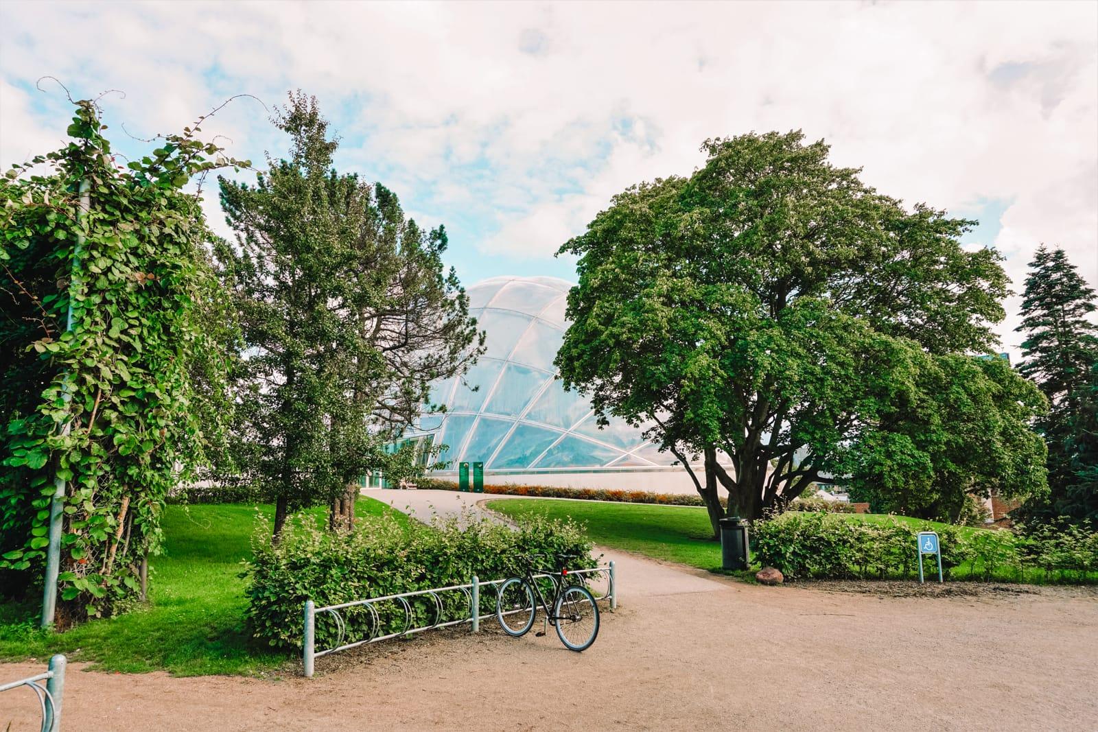 15 Best Things To Do In Aarhus, Denmark (8)