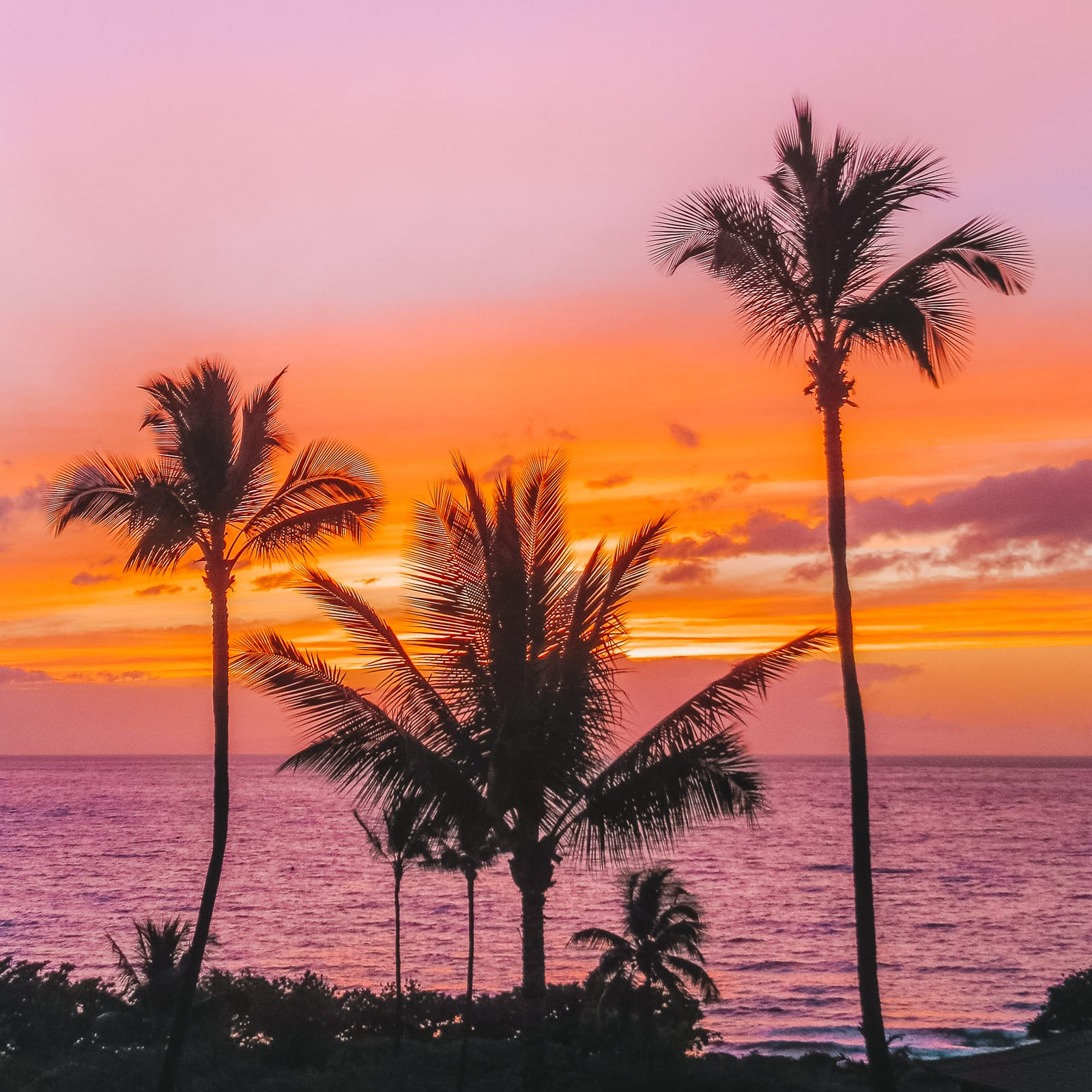 Maui Hawaii Beaches: 13 Best Beaches In Maui, Hawaii