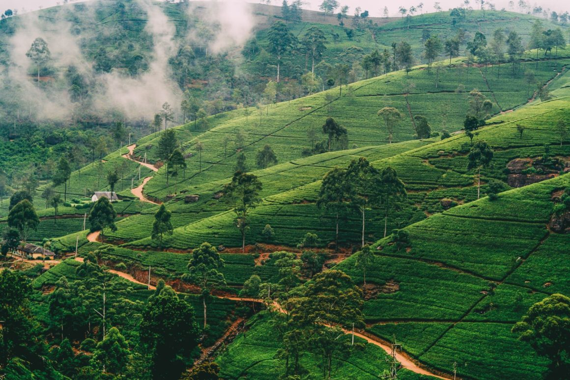 10 Best Places To Visit In Sri Lanka (9)