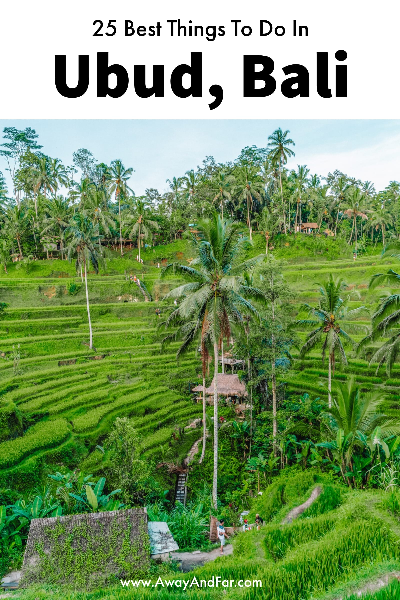 25 Best Things To Do In Ubud, Bali (1)