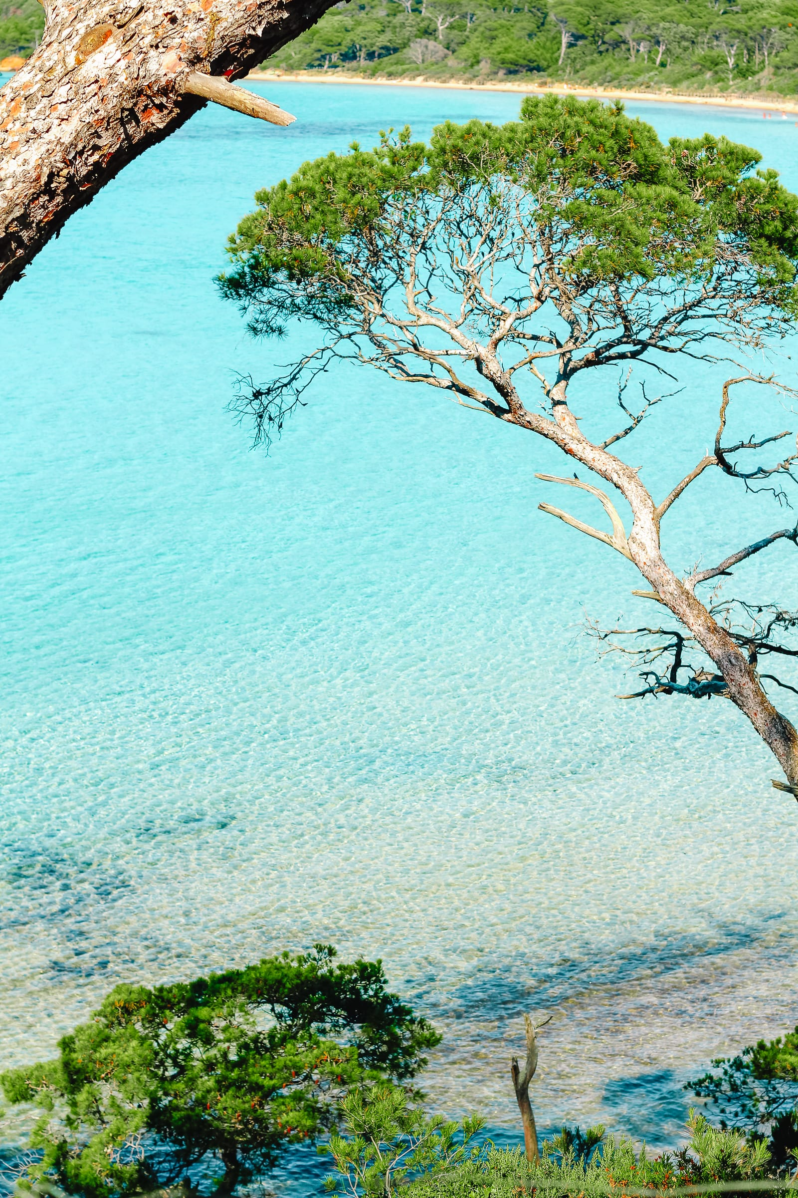 15 Best Beaches In The South of France (15)