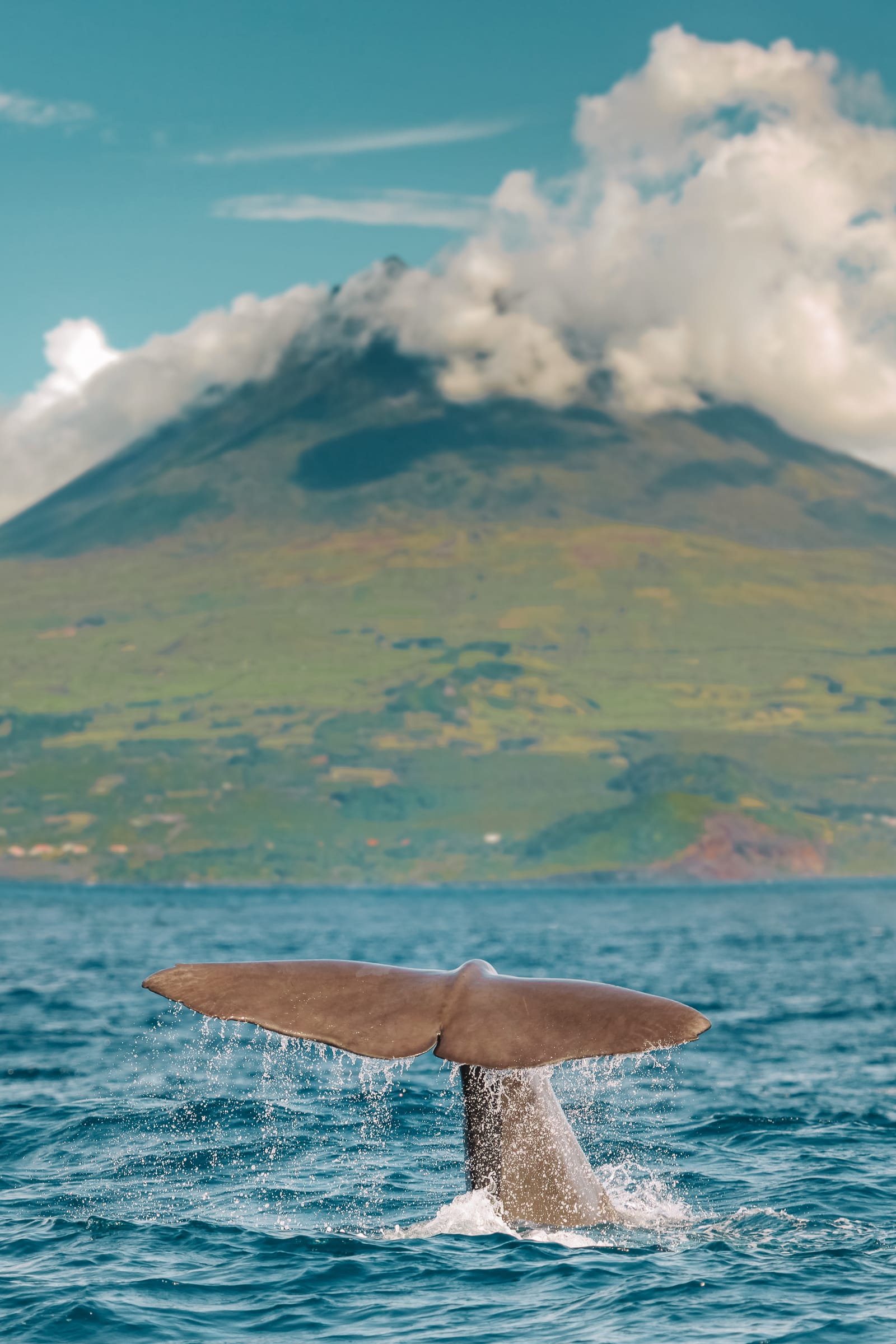 15 Best Things To Do In The Azores, Portugal (17)